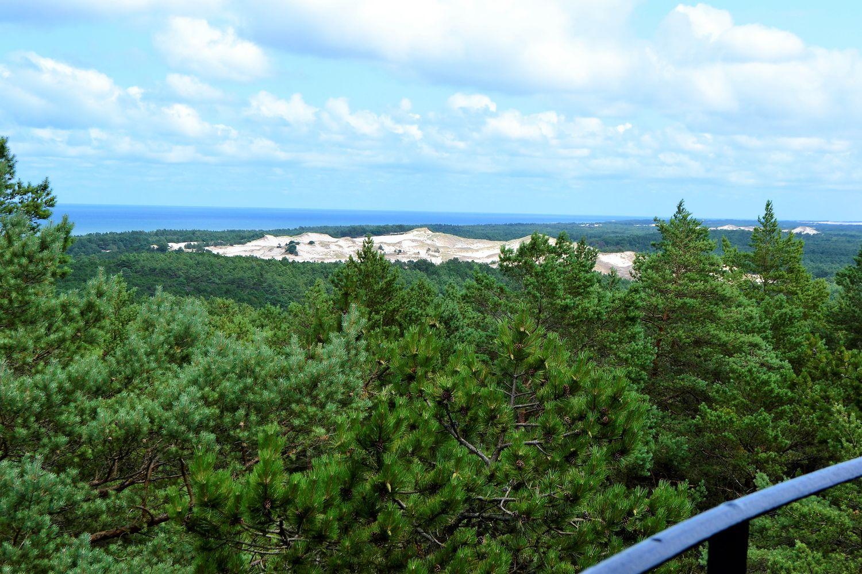 latarnia Czołpino. Widok na wydmy